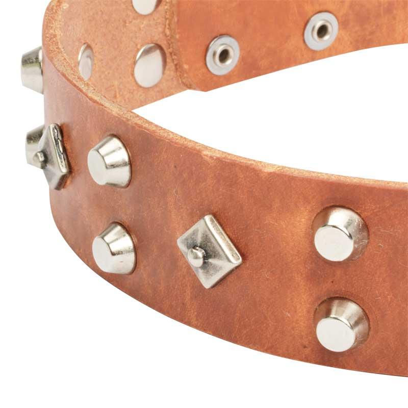 collier en cuir pour chien design original bienfaits des dieux c16. Black Bedroom Furniture Sets. Home Design Ideas
